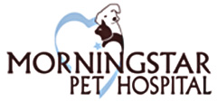 Morningstar Pet Hospital